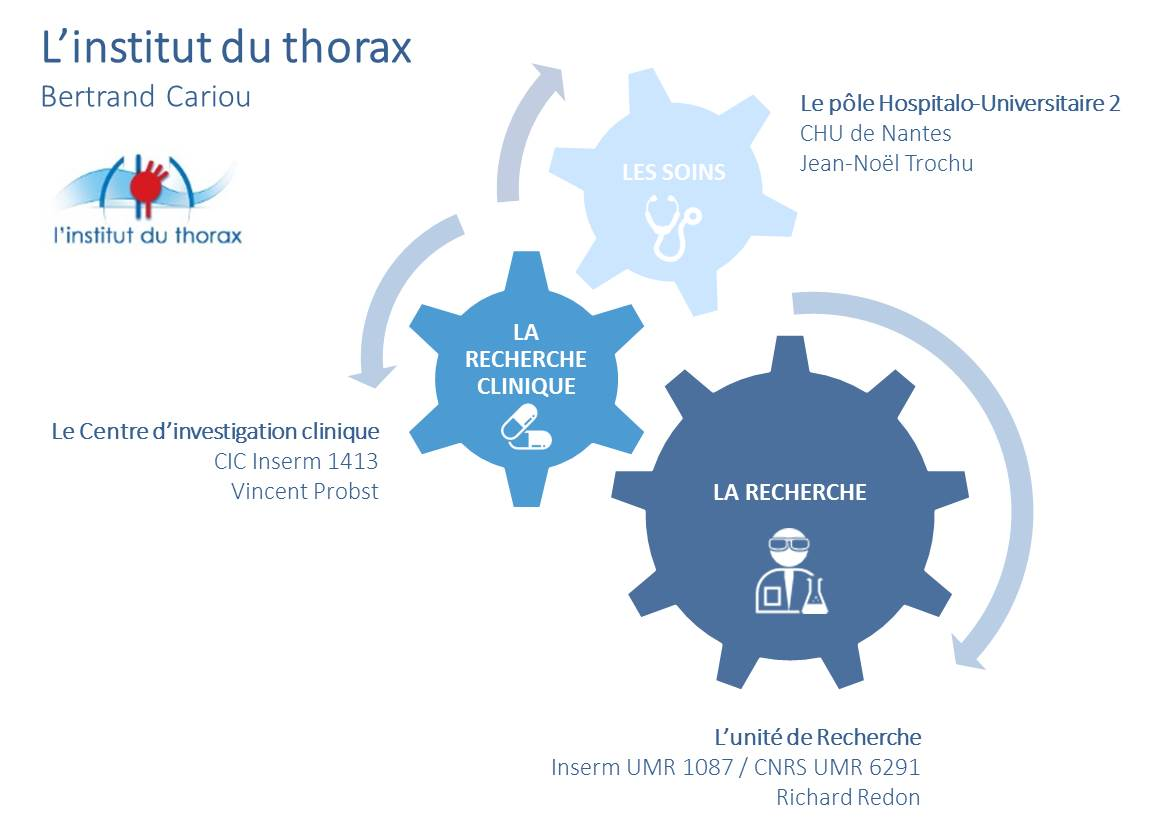 l'institut du thorax